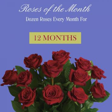 Roses Of The Month - 12 Months
