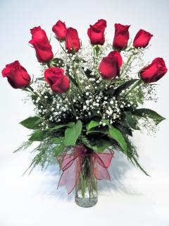 LONG STEM PREMIUM RED ROSES