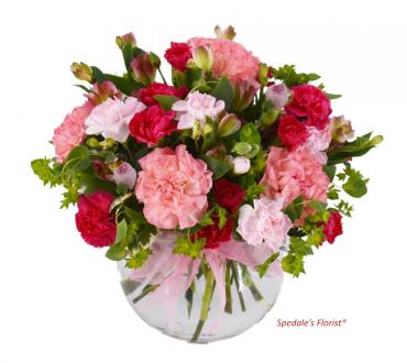 Happy Carnations