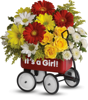 Baby\'s Wow Wagon - Girl