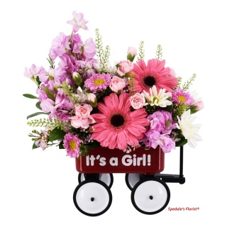 Baby\'s First Wagon - Girl