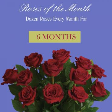Roses Of The Month - 6 Months